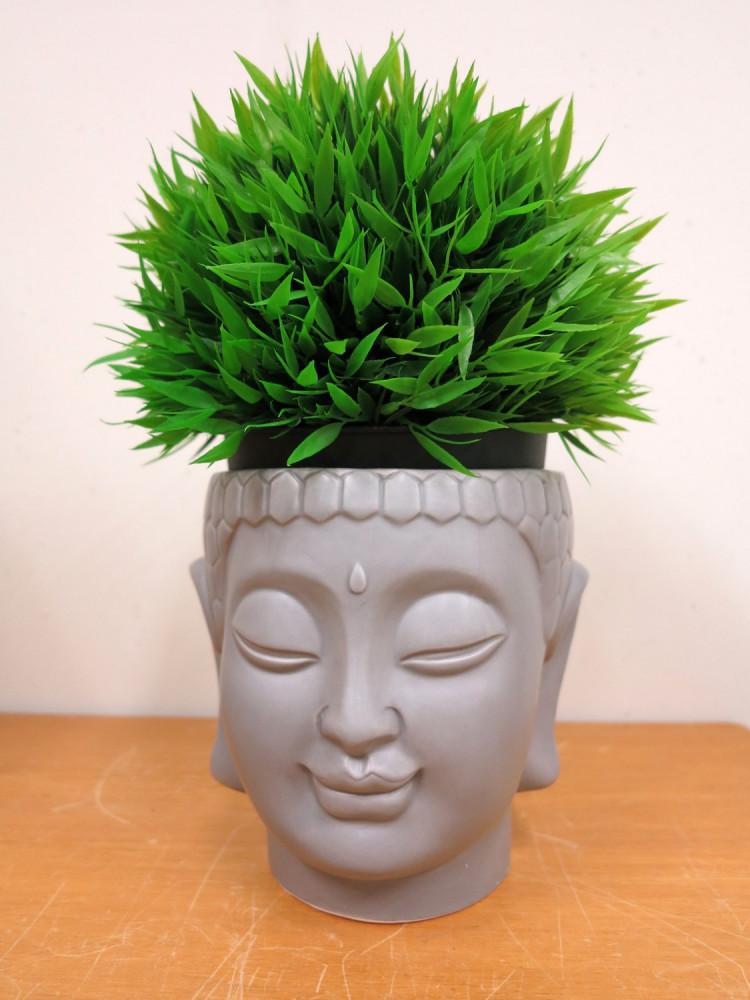 A Buddha head as a plant pot